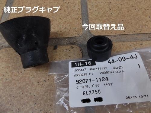 DSCF4977.JPG